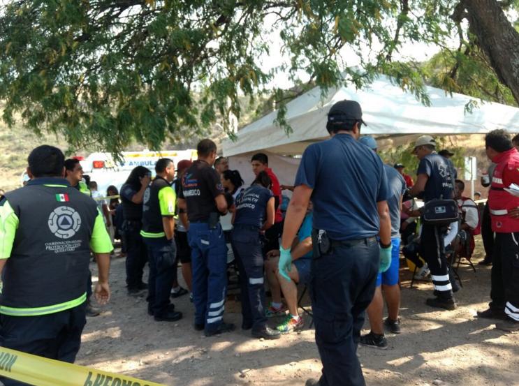 Abejas interrumpen viacrusis en Querétaro