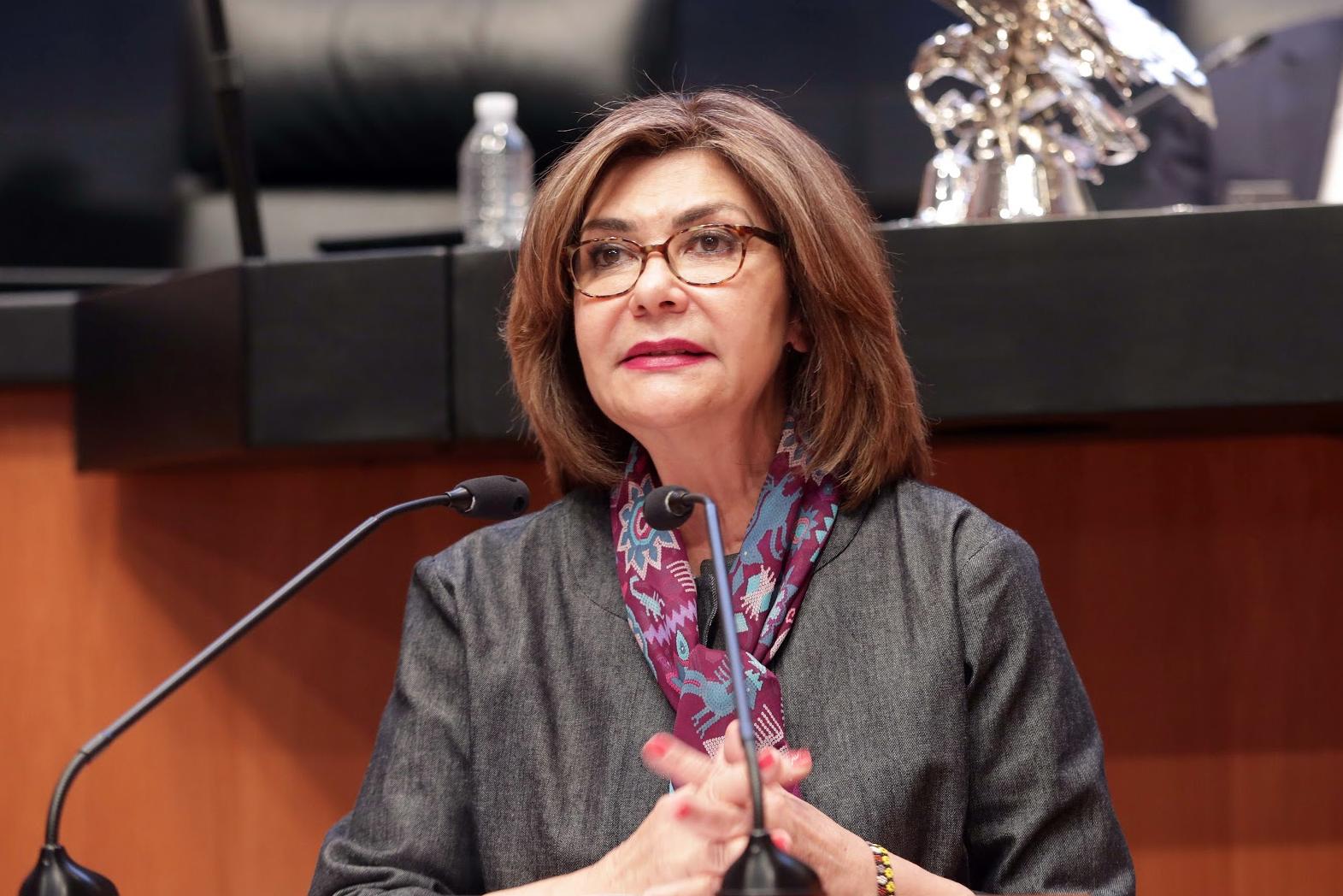 La Comisión de Derechos Humanos del Senado fortaleció los derechos de la niñez y los jóvenes
